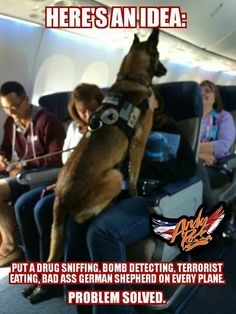 Wicked Training Your German Shepherd Dog Ideas. Mind Blowing Training Your German Shepherd Dog Ideas. Funny Animal Pictures, Cute Funny Animals, Funny Dogs, I Love Dogs, Cute Dogs, Awesome Dogs, Military Dogs, Police Dogs, Military Service