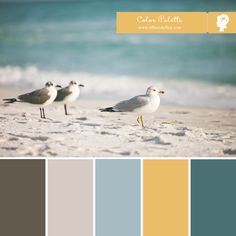 Seaside Hues by Tiffany Kelley Design http://design.tiffanykelley.com
