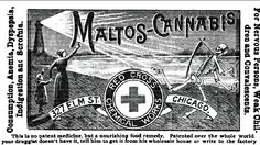 An ad for Maltos-Cannabis, the most cannabis-o-riffic food supplement of the 1890s