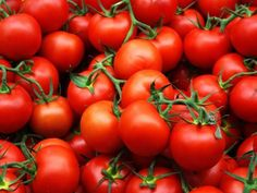 Producers and exporters in Turkey are content with the increase in tomato exports for the first five months of the year. Fresh Fruits And Vegetables, Growing Vegetables, Vegetables Garden, Gin Soaked Raisins, List Of Veggies, Tomato Vine, Oil For Dry Skin, Deli Food, Top 5