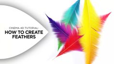 How to Create Colorful Feathers in Cinema 4D on Vimeo