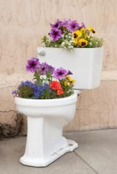 Hah!  Flowers in an old toilet!  Would be cool in a colored one.  From love to know green living.