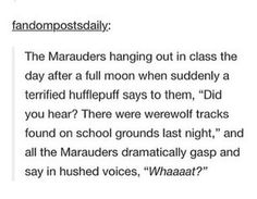 The Marauders react to the news of werewolf tracks on the grounds.
