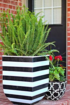 easy DIY black and white striped flower pots, outdoor decor, patio decor Flower Planters, Flower Pots, White Planters, Diy Planters, Flowers Garden, Decorative Planters, Diy Flower, Fern Planters, Porch Planter