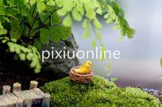 $0.85 (Buy here: https://alitems.com/g/1e8d114494ebda23ff8b16525dc3e8/?i=5&ulp=https%3A%2F%2Fwww.aliexpress.com%2Fitem%2F1pc-DS67-Cute-Cartoon-Yellowbird-for-Micro-Landscape-Yellowbird-Micro-land-craft-Pot-Garden-Decorations-Free%2F32712110604.html ) 1pc DS67 Cute Cartoon Yellowbird for Micro Landscape Yellowbird Micro land craft Pot Garden Decorations Free Shipping Russia for just $0.85