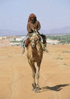 Omani man riding a camel in the interior