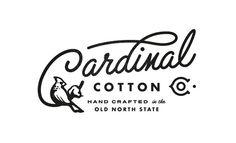 Cardinal cotton logo