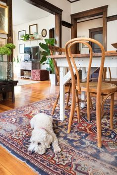 House Tour: A Light and Character-Filled Boston House | Apartment Therapy