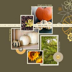 #papercraft #scrapbook #layout    Hello Fall - Digital Scrapbooking Ideas - DesignerDigitals