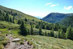 Südtiroler Natur - Urlaub in Bozen! #bozen #südtirol #travel