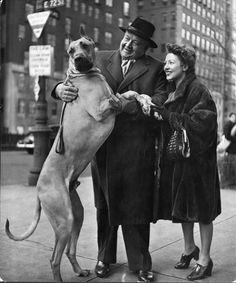 Metropolitan Opera's Heldontenor Lauritz Melchior and His Wife with Their Great Dane, NYC 1944. From the series 'City Dogs'. Nina Leen