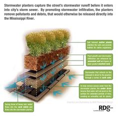This diagram depicts the construction of a stormwater planter, one of many Green Street strategies that can be incorporated to help manage stormwater in urban environments. Sponge City, Pool Care, Green Street, Rain Garden, Water Element, Landscape Drawings, Plant Design, Urban Planning, Ecology