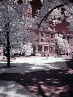 Jesse Hall, University of Missouri