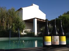 old fave - esporao vinho branco Wine, Drinks, Bottle, Food, White Wine, Drinking, Beverages, Flask, Essen