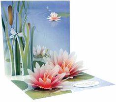 $ Water Lily Pop Up Greeting Card  http://www.sendmore.co.uk/acatalog/Sympathy_Cards.html