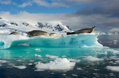 15 Incredible Photos That'll Remind You to Be Awed by Planet Earth | WIRED