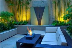 Back wall lighting idea used with tall plants