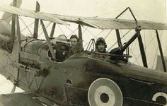RE8 (nicknamed the; 'Harry Tate' - after the popular british movie & music hall comedian).