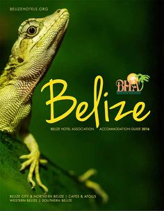 Download the 2016 BHA Hotel Guide! | Travel | Ambergris Caye Belize Message Board Belize Hotels, Belize City, Ambergris Caye, Belize Travel, Spanish Language, Outdoor Fun, Lodges, Country, Message Board
