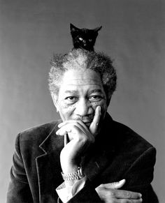 Morgan Freeman with a cat on his head. Morgan Freeman being bromantic. Morgan Freeman looking sad. Morgan Freeman looking SHO. Celebrities With Cats, Celebs, Kino Film, Actrices Hollywood, Cat People, Famous Faces, Famous Men, Crazy Cat Lady, Belle Photo