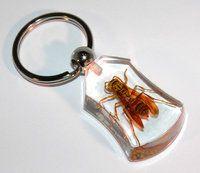 Schlüsselanhänger mit Wespe