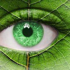 Գիտե՞ք, որ կարող եք պահպանել Ձեր աչքերը վնասակար ուլտրամանուշակագույն ճառագայթներից՝ ուտելով ճիշտ մրգեր և բանջարեղեններ: Բացահայտե՛ք , ինչպես պաշտպանել Ձեր աչքերը:
