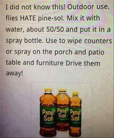 how to keep fruit flies away