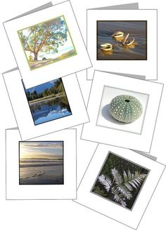 Printable Mini cards New Zealand nature theme Set by NewCreatioNZ, $8.00