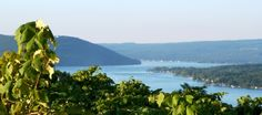 Finger Lake Region of upstate New largest wine producer in the USA--next to California. Seneca Lake, Finger Lakes, Travel And Tourism, Wineries, Wine Country, Long Island, Vacation Ideas, Trail, Scenery