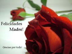 Feliz día a todas las madres, gracias por ese don maravilloso de dar vida. Felicidades.