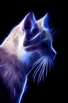 artwork of cats with fire - Bing images Art Fractal, Fractal Images, Beautiful Cats, Animals Beautiful, Cute Animals, Cat Embroidery, Illustration Photo, Illustrations, Image Chat