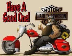 Taking a Bike Ride? Biker Quotes, Motorcycle Quotes, Motorcycle Art, Motorcycle Garage, Art Harley Davidson, Bike Ride Quotes, Biker Tattoos, Hd Quotes, Biker T Shirts