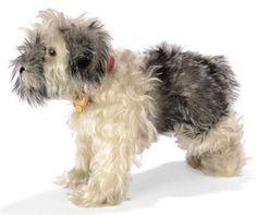 A STEIFF STANDING PULI, (1328,02), long white and grey mohair, darker grey tipping, brown and black glass eyes, black stitching, squeaker, red collar, FF button with yellow cloth tag and chest tag, late 1930s --13½in. (34cm.) long