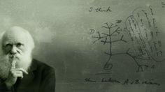Charles Darwin e o percurso da viagem de pesquisa no século 19, a bordo do barco inglês HMS Beagle.  Veja também: http://semioticas1.blogspot.com.br/2012/10/lista-vermelha-da-extincao.html