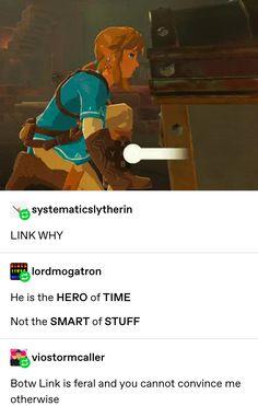 The Legend Of Zelda, Legend Of Zelda Memes, Legend Of Zelda Breath, Gamer Humor, Gaming Memes, Link Botw, Botw Zelda, Twilight Princess, Princess Zelda