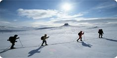 Cross country skiing in Lapland.  Activities in Saariselkä http://www.saariselka.com/individual/activities