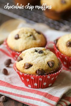 Chocolate Chip Muffi