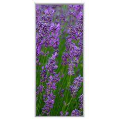 Deursticker Lavendel | Een deursticker is precies wat zo'n saaie deur nodig heeft! YouPri biedt deurstickers zowel mat als glanzend aan en ze zijn allemaal weerbestendig! Verkrijgbaar in verschillende afmetingen.   #deurstickers #deursticker #sticker #stickers #interieur #interieurprint #interieurdesign #foto #afbeelding #design #diy #weerbestendig #bloemen #bloem #natuur #paars #lavendel