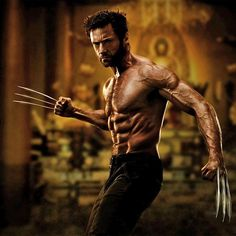 The wolverine