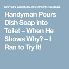Handyman Pours Dish Soap into Toilet – When He Shows Why? – I Ran to Try It!