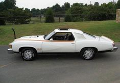 Vintage Motorcycles Muscle 1977 Pontiac LeMans Can Am Pontiac Lemans, Pontiac Cars, Pontiac Firebird, Best Muscle Cars, American Muscle Cars, Hurst Oldsmobile, Camaro Z, Corvette, Mustang Cars