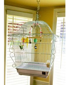 Canary Bird Cage Cages for Medium Birds Vintage Inspired Decorative Prevue Pet J #PrevueHendryx