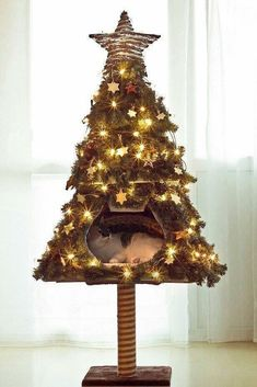 Christmas tree for cats Cat Christmas Tree, Christmas Animals, Christmas Time, Christmas Lights, Anti Chat, Cat Castle, Diy Cat Tree, Cat Scratcher, Cat Crafts
