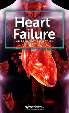 In this nursing care plan guide are 15 NANDA nursing diagnosis for congestive heart failure. Know the nursing interventions and rationales. Nursing School Scholarships, Best Nursing Schools, Nursing School Tips, Nursing Career, Nursing Assistant, Nursing Students, What Is Nursing, Nursing Care Plan, Cardiac Nursing