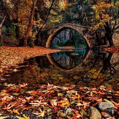 SEASONAL – AUTUMN – fall leaves in brilliant colors decorate the landscape at the ancient kefalos bridge, island of cyprus, photo via louise. Beautiful World, Beautiful Places, Beautiful Pictures, Simply Beautiful, Wonderful Places, All Nature, Autumn Nature, Foto Art, Faeries