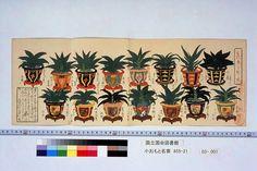 『小おもと名寄(こおもとなよせ)』 水野忠暁編・関根雲停画 天保3 (1832)