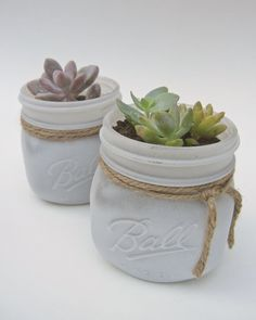 "Large 4""x 4"" Potted Succulent in White Painted Mason Jar- Shabby Chic Rustic Vintage Country- Plant/Flower Gift, Wedding/Baby Shower Favors on Etsy, $7.00"