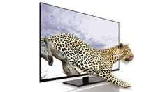 Positioned as a land-grabbing large television, the Toshiba 55VL963 appears to have all the requisite qualifications to march ahead of its rivals: it's attractively priced, is internet-enabled and even tempts with wireless WiDi.