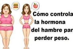 Todas las dietas prometen que vas a perder peso siempre y cuando usted se apega a ellas durante mucho tiempo. La mayoría de ellos requieren enormes sacrificios y mucho tiempo. Todos soñamos con despertar con menos