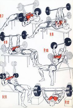 Chest WORKOUT For Mass and muscle building Tips http://alphateam.sg